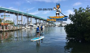 addle board fort myers beach matanzas ass - mage
