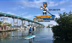 Sea Dog Eco Tours Matanzas Pass - Image
