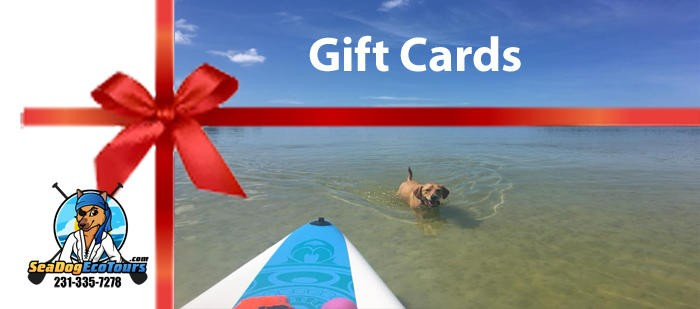 sea dog eco tours gift cards - image