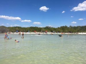dog beach estero bay - image