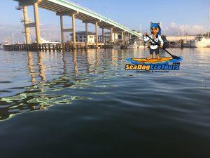 matanzas pass bridge - image