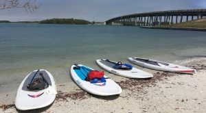 our paddleboards - image