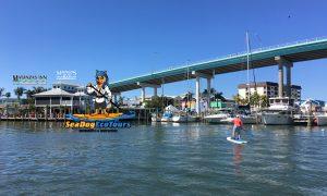 Paddle Board Tours at Matanzas - image