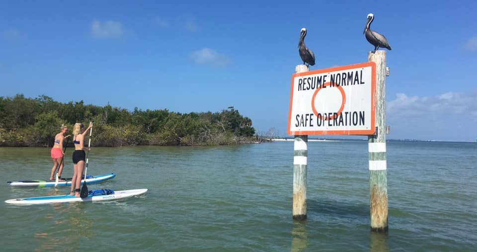paddle boarding at bowditch point by resume normal sign - image