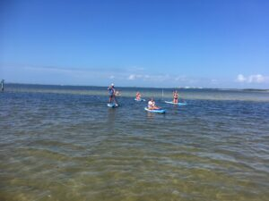 explore the bay paddle boarding - image