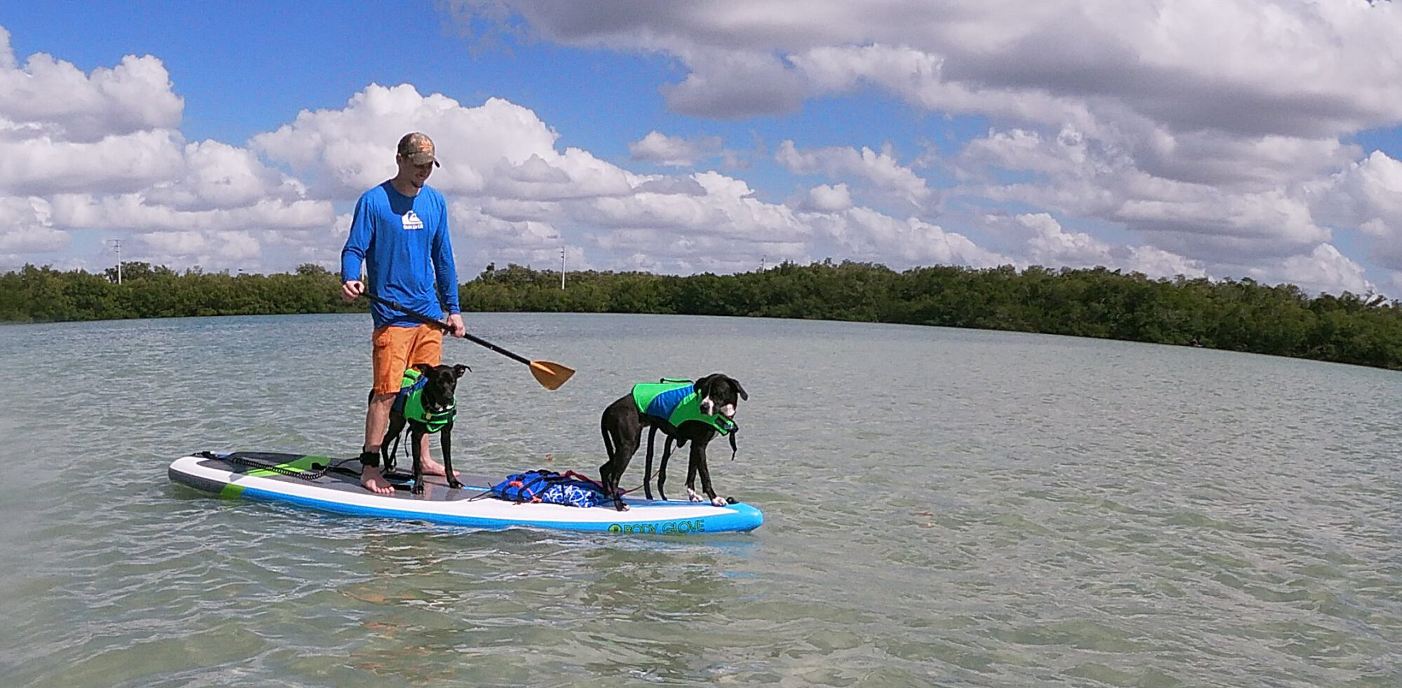 Sea Dog Eco Tours #FMB 231-335-7278