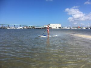 paddle boarding the inner harbor - image